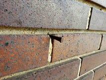 Nail in wall. Nail in a brick wall Royalty Free Stock Photography