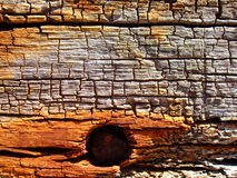 Nail in the wood Royalty Free Stock Photo