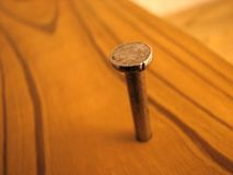 Nail in wood board. Nail driven in a board Stock Photos