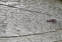 Nail in a wooden board. The nail in a wooden board, close up Royalty Free Stock Photos