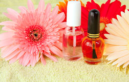 Nailcare products Stock Photography