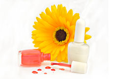 Nailpolish Royalty Free Stock Photos