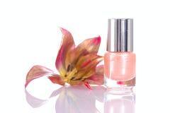 Nailpolish rose Image stock