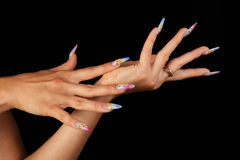 Nails Stock Image