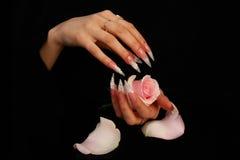 Nails Royalty Free Stock Photo