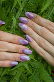 Nails. Manicure, designed purple nails over green fern Royalty Free Stock Photos