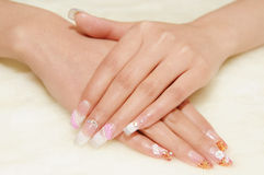 Nails Stock Image