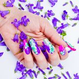 Nails decorated with floral arrangements for a colorful spring a. Hand with nails rebuilt and decorated with colorful flowers bring blue and white floral on Royalty Free Stock Photo