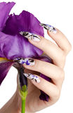 Nails and flower. Female hand with beautiful nails over a violet flower, on a white background royalty free stock photos