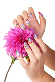NAILS AND FLOWER. Two hands of the girl with beautiful nails hold a flower, on a white background royalty free stock photo