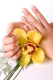 Nails with flower Royalty Free Stock Images