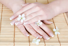 Nails with flower Stock Photo