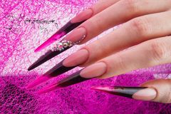 Nails and hands Stock Image