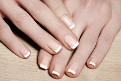 Nails with perfect french manicure. Care for female hands.  Stock Photo