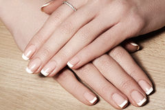Nails with perfect french manicure. Care for female hands. Royalty Free Stock Image
