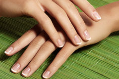 Nails with perfect french manicure. Care for female hands. Royalty Free Stock Photo