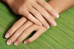 Nails with perfect french manicure. Care for female hands. royalty free stock photography
