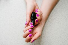 Nails purple, pink. In the hands of gel nails, manicure primer base. In the hands of gel nails, gel nail manicure primer base. Bank black. Nails purple, pink Stock Photography