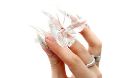 Nails with Rhinestones. And butterlfly Royalty Free Stock Image