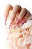 Nails with Rhinestones. And butterlfly Royalty Free Stock Photos