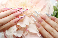 Nails with Rhinestones. And butterlfly Royalty Free Stock Photography