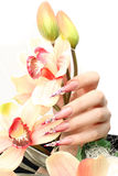 Nails with Rhinestones. And butterlfly Stock Photography