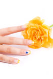 Nails and rose on white royalty free stock photo