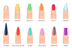Nails shape icons set. Types of fashion bright colour nail shapes collection. Fashion nails type trends. Beauty spa Royalty Free Stock Image