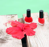 Nails varnish. Red nails varnish and red flower on the wood terrass along a swimming pool Royalty Free Stock Photography