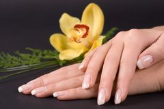 Nails With Flower Royalty Free Stock Photo