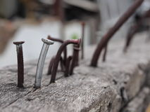 Nails on wood. Old and rusted nails on wood log with other steel and iron Royalty Free Stock Photo