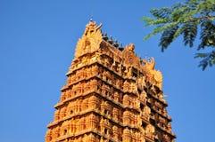 Nainativu Nagapooshani阿曼寺庙贾夫纳, Sri 库存图片