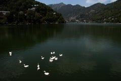 Nainital Lake Stock Photos