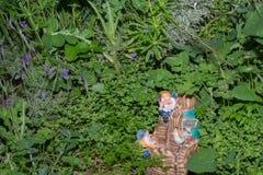 Nains dans l'herbe Images stock
