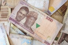 Naira, χρήματα από τη Νιγηρία Στοκ εικόνα με δικαίωμα ελεύθερης χρήσης