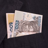 Nairas in a pocket. Closeup of striped male suit with nairas in a pocket Royalty Free Stock Image