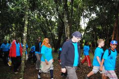 Nairobi Hospice Charity Walk. To raise funds for its patients in Nairobi Kenya Ngong forest Stock Photography