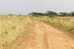 Nairobi National Park Road Stock Photo