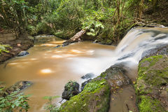 Nairobi River in Karura Forest, Kenya Stock Photos