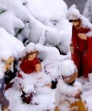 Naissance de jésuite dans la neige Photos libres de droits