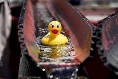 Naissance du canard en caoutchouc Photos stock