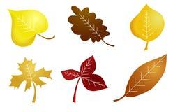 Naive Blätter des Herbstes Lizenzfreies Stockfoto