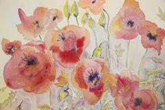 Naive poppies in watercolor with yellow background Stock Image