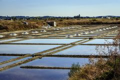 Salt pans, Guérande, Loire-Atlantique, France. Salt pans for the extraction of sea salt at the Atlantic Ocean. Sea water irrigates a complicated network of royalty free stock photo
