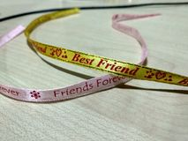 Najlepsi Przyjaciele dla miłości zdjęcie royalty free