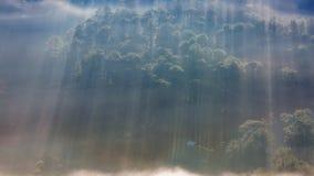 Najlepszy fotografia natura z słońce promieniami, światło słoneczne w lesie i mali domy przy jutrzenkową częścią 8, zdjęcie royalty free