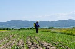 Najlepszy rolnik zdjęcie stock