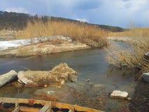 Najlepszy rzeka krajobraz Rosja obraz royalty free