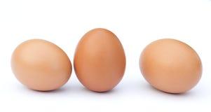 najpierw brązowe jajka skupiają się dwa obrazy stock
