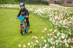 najpierw na rowerze Obrazy Royalty Free
